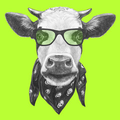Portrait of Cow with glasses and scarf. Hand drawn illustration.