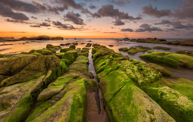 Super green moss on the leading line rock with orange sunset
