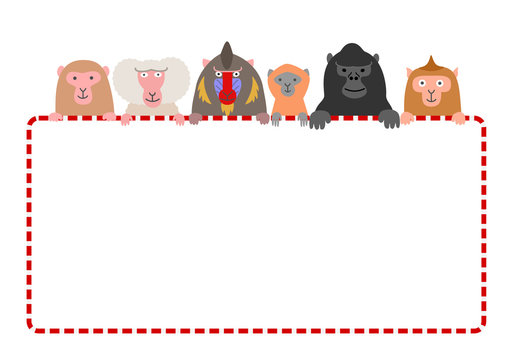 monkies with red and white frame card, white background