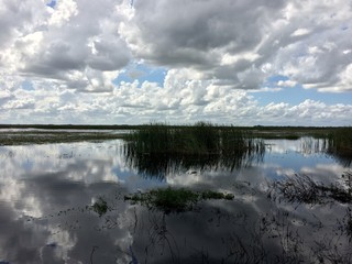 Headwaters of the Everglades