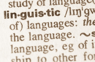 Dictionary definition of word linguistic