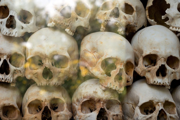 Human Skulls at the Choeung Ek Genocidal Center, Phnom Penh, Cam