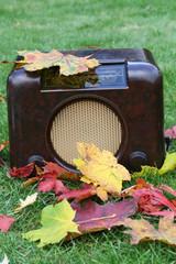 antikes Radio mit buntem Herbstlaub im Garten