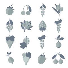 Vector black white gray icons of berries set