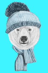 Portrait of Polar Bear with hat and scarf. Hand drawn illustration.