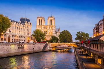 Fototapete - La Seine et Notre Dame de Paris, France