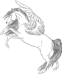 Coloring book with a pegasus