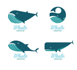 Whales icons. flat design elements. vector illustration