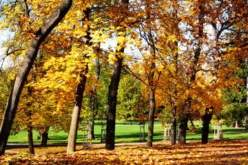 Autumn, fall.