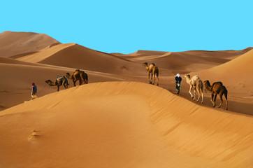 Photo sur Toile Desert de sable Caravan in desert