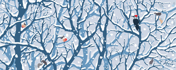 Winter Wonderland - First Snow.