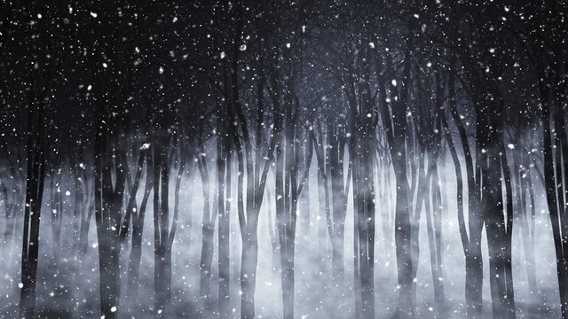 3D foggy forest on a snowy night