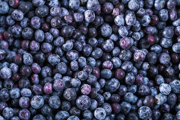 Frozen blueberry texture - background