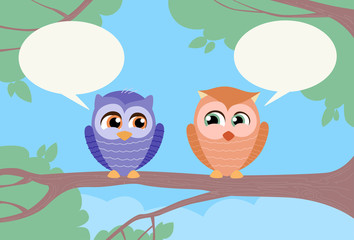 Two Owls Chat Communication Sitting on Branch