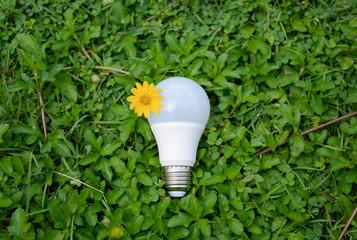 LED Bulb - Technology of eco-friendly lighting