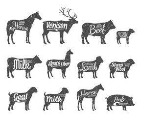Livestock Silhouettes Collection. Livestock Labels Templates