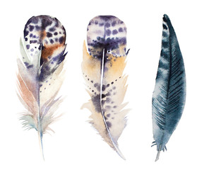 hand drawn watercolor feather set, raster illustration isolated