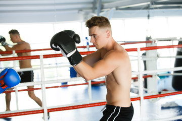 Action boxer gloves in training attitude