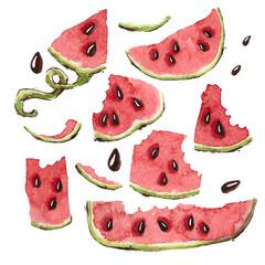 Watercolor Watermelon Slices Set