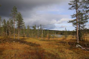 Lakes at Myrflodammen near Saelen, Sweden on september day