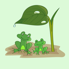 Cartoon frogs under the leaf. Vector illustration.
