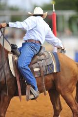 Cowboy extreme event , Futurity 2015, Israel