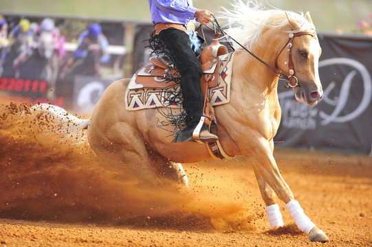 A close-up view of a rider and horse sliding in the dust.