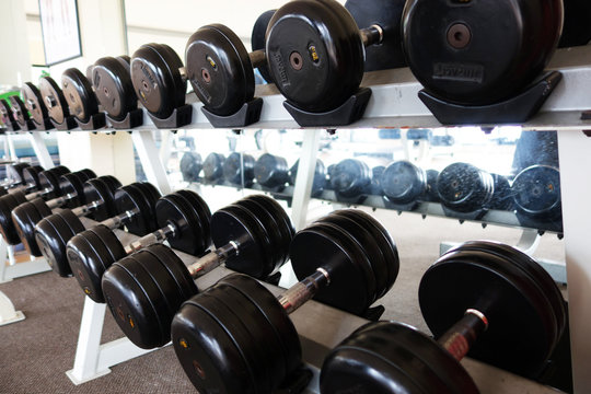 dumbbells for weight lifting in fitness room