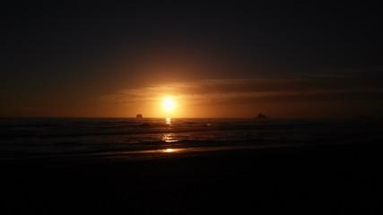 Sunset at twilight forrest