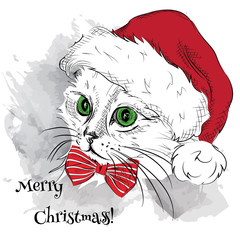 Door stickers Hand drawn Sketch of animals The christmas poster with the image cat portrait in Santa's hat. Vector illustration.