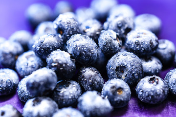 Blue blueberries close up on a purple background