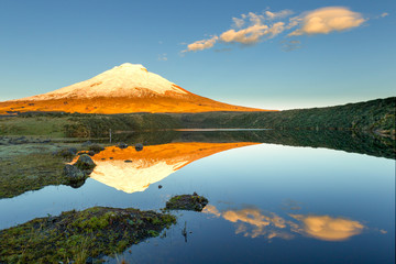 Poster Reflection cotopaxi ecuador volcano domingo santo volcanes laguna snow national park cotopaxi volcano reflecting in santo domingo reservoir