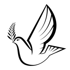 simple illustration of peace dove carrying olive branch