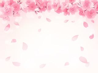 桜 背景 イラスト