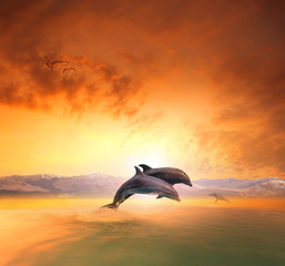 Photo sur Aluminium Dauphins couples of sea dophin jumping through ocean wave floating mid ai