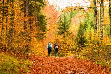 girls trekking in the wood