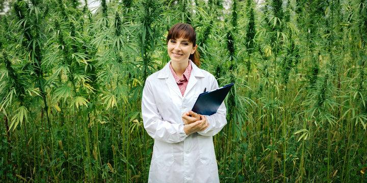 Confident doctor posing in a hemp field