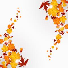 Autumn leaves background design, vector