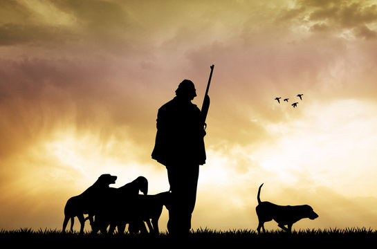 hunter with dogs at sunset