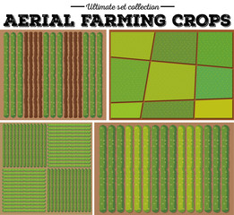 Aerial farming crops pattern