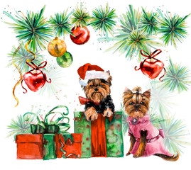 Two dogs. Yorkshire terrier. Ridiculous puppy background, watercolor composition. New year card. Hand drawn watercolor illustration