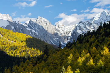 Mountain with snow and pine forest in autumn, taken in the eveni