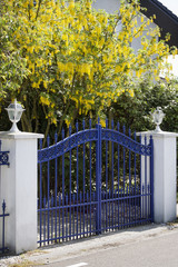 Blue metal gate