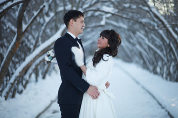 Beautiful winter and wedding.