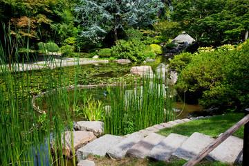 Tranquil garden landscape