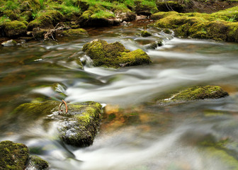 River in Wales (Sgwd yr Eira - Brecon Beacons)