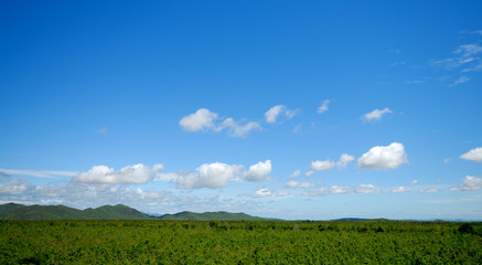 beautiful landscape on mountain with blue sky and cloud