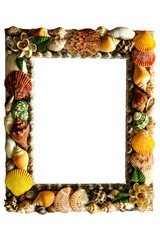 Shell picture frame.