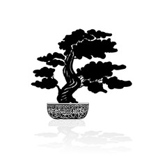 Bonsai silhouette over a white background