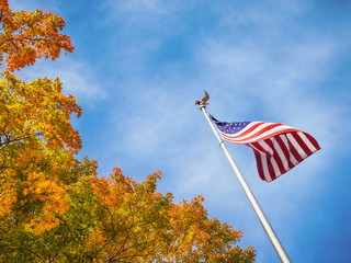 American flag waving in the wind with golden autumn tree tops